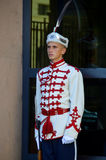 Guards of Honor Royalty Free Stock Photography