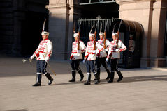 Guards of Honor Stock Images