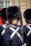 Guards of honour in Copenhagen Royalty Free Stock Image