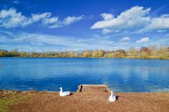 Free Guards Of The Lake Royalty Free Stock Photos - 139885618