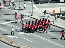 Guards, Ottawa royalty free stock photos
