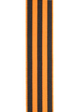 Guards ribbon Stock Photography