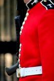 Guardsman Royalty Free Stock Photo