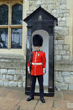 Guardsman Stock Images