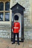 Guardsman. Royal Guardsman in bearskin hat. Buckingham Palace. England Stock Images