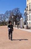 Guardsman of the Royal Palace Royalty Free Stock Image