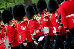 Guardsmen Royalty Free Stock Photography