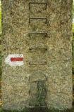 Guarida del ` s del lobo, arcón del ` s de Adolf Hitler en Polonia Primeras jefaturas militares delanteras del este en la Segunda Imagen de archivo libre de regalías