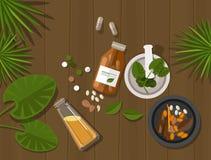 Guarigione naturale di erbe della natura di salute del farmaco Fotografia Stock Libera da Diritti