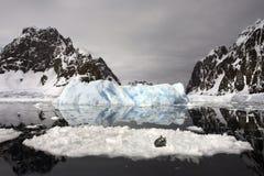 Guarnizione di Crabeater - Antartide Fotografie Stock Libere da Diritti