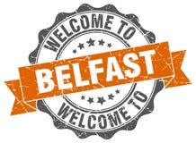 Guarnizione rotonda del nastro di Belfast Fotografie Stock