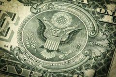 Guarnizione sul dollaro Bill Fotografia Stock Libera da Diritti