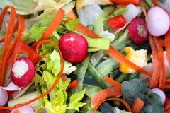 Guarnizioni della verdura fresca Immagini Stock Libere da Diritti