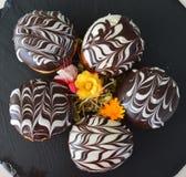 Guarnizioni di gomma piuma con cioccolato Fotografia Stock