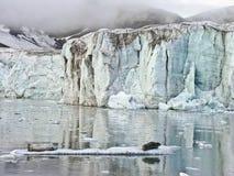 Guarnizioni in mare artic