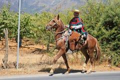 Guasa, Chilean Cowboy in Traditional Dress on Horseback. Brilliant colors enhance the traditional dress of a guasa, a cowboy in Chile while he travels via stock image