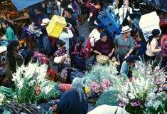 GUATEMALA DA AMÉRICA LATINA CHICHI Foto de Stock