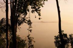 Guatemala - Dschungel von Peten stockfotos