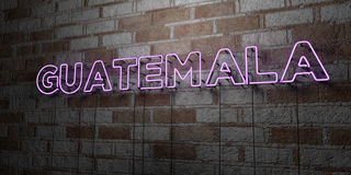 GUATEMALA - Glowing Neon Sign on stonework wall - 3D rendered royalty free stock illustration Stock Photos