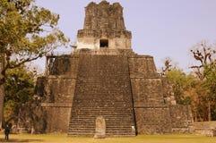 Guatemala - mayan pyramid Stock Photography