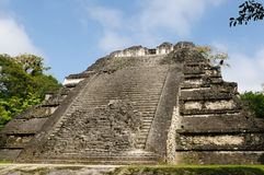 Tical Mayan ruins Royalty Free Stock Photo