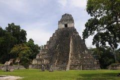 Guatemala-- Tikal Mayapyramide lizenzfreie stockfotos