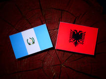 Guatemalan flag with Albanian flag on a tree stump isolated Royalty Free Stock Photos