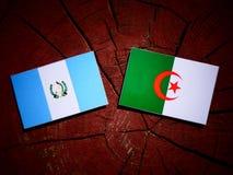 Guatemalan flag with Algerian flag on a tree stump isolated Stock Photo