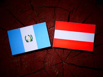 Guatemalan flag with Austrian flag on a tree stump  Royalty Free Stock Photography