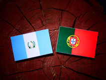 Guatemalan flag with Portuguese flag on a tree stump isolated. Guatemalan flag with Portuguese flag on a tree stump stock illustration