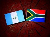 Guatemalan flag with South African flag on a tree stump isolated Stock Photography