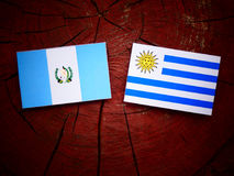 Guatemalan flag with Uruguaian flag on a tree stump isolated Royalty Free Stock Images