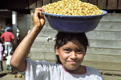 Guatemalan girl drags corn kernels on head. Guatemala, department of Alto Verapaz, San Cristobal village: in the mountains around Coban is the main food of the stock image