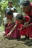 Guatemaltekische indische Frauen, die Gemüsesamen säen Stockfotos