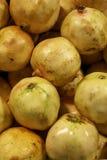 guava świeża sterta Zdjęcie Stock