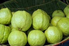 Guava 1 Стоковое Фото