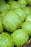 Guava 1 Стоковые Изображения RF