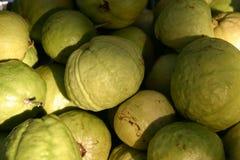 Guava Stock Image