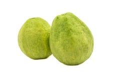 Guava royaltyfria bilder