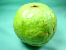 Guava Obraz Royalty Free