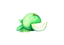 Guava стоковые фотографии rf