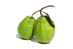 A guava. A pair of guava on the white background Stock Images