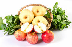 Guava apple in the basket on white background Stock Photos