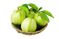 Guava in basket. On white background royalty free stock photography