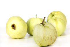 Guava fem Fotografering för Bildbyråer