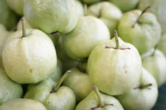 Guava fresh fruits heap Royalty Free Stock Photography
