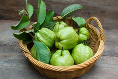 Guava. Fresh green guavas on old wood background Stock Photos