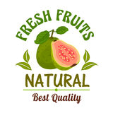 Guava. Fresh natural tropical exotic fruit emblem Stock Photo