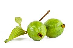 Guava fruit Stock Images