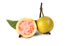 Guava fruit isolated on white background Stock Photos